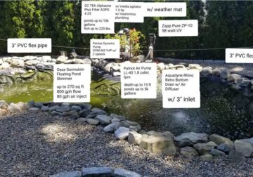 Koi and Gold fish, and Pond Equipment